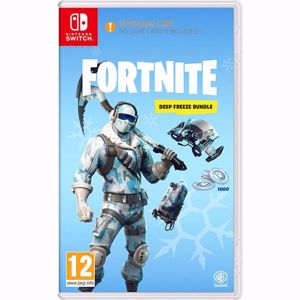 Fortnite Deep Freeze Bundle ( NS )