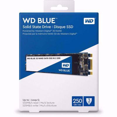 WD Blue 3D NAND 250GB PC SSD - SATA III 6 Gb/s M.2 2280 SSD