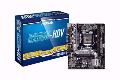 Asrock Motherboard B250M-HDV